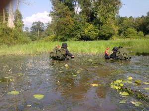 Rhino protection units