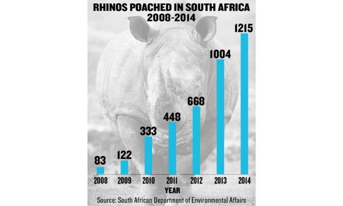 Rhinos poached in South Africa