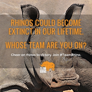 Support World Rhino Day