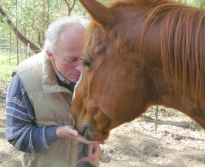 Paul and Ben, a rescue horse who had once been abused, revealing how love and kindness can restore trust in animals.